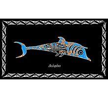 Delphinus delphis -  Dolphin Photographic Print