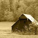 Caughron Barn  by Gary L   Suddath