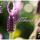 Thank You by reflector