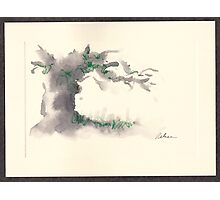 """Serenity""  ink wash watercolor on paper. Photographic Print"