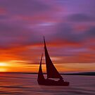 Sailing off into the Sun by David Alexander Elder