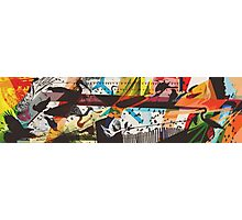 For The Birds Skate Deck Design Photographic Print