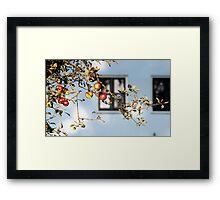 Eva fruit Framed Print