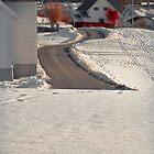 Snow. Landscape. by tutulele