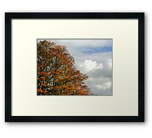 Trees and Clouds Framed Print