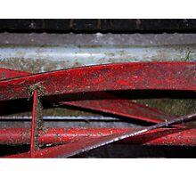 Lawnmower Blades Photographic Print