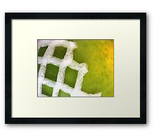 Papaya Abstract Framed Print