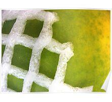 Papaya Abstract Poster