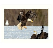 Check out these Wings! Art Print