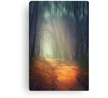 liquid dreams Canvas Print