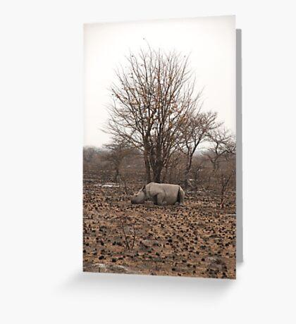 a sad scene in the bush Greeting Card