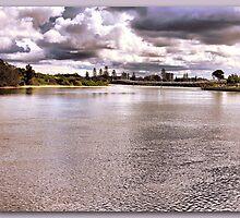 Forster Storm by john NORRIS