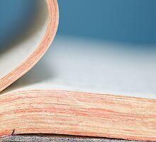 Bibliophile by Lisa Knechtel