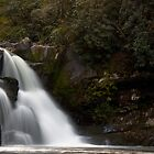 Abrams Falls, Cades Cove Tennessee by Sam Warner