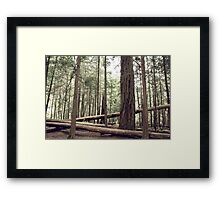 Touch. Wood. Framed Print