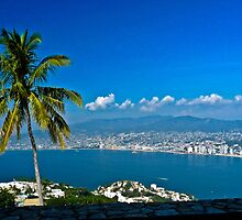 Acapulco Harbour by Stephen  Saysell