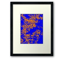 Series: Leaves 7  Framed Print