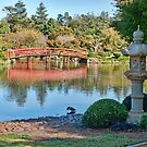 Japanese Garden, Dubbo, NSW by clearviewstock