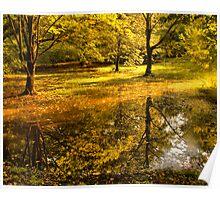 Отражение осени -Fall Reflection Poster