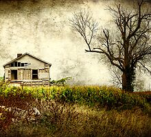 Nothing Left But The Corn by Bob Dilworth