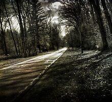 Skewed Road by Bob Dilworth