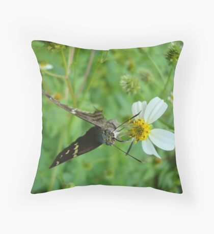 Long-tailed Blue Skipper on Spanish Needles Throw Pillow