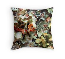Symbiotic Landscape Throw Pillow