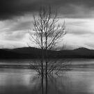 Lake Jindabyne No.4 by Syd Winer