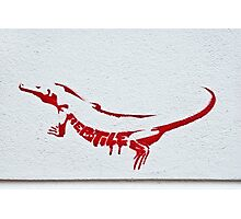 RED As A Reptile Photographic Print
