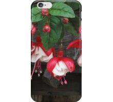 Red Fuchsia iPhone Case/Skin