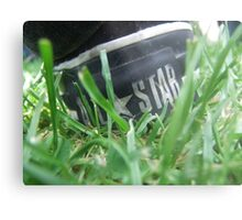 All Star Ant view Metal Print