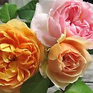 Three Roses by Christine  Wilson