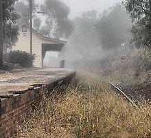 Kandos Railway Station NSW Australia by Bev Woodman