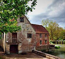 Sturminster Newton Mill by HistoryBuff