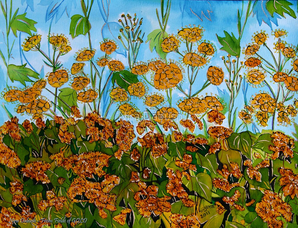 From Fields of GOLD by Nira Dabush