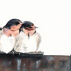 Welcome Swallows by Louise De Masi
