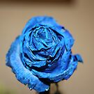 BLUE ROSE by Marie Brown ©
