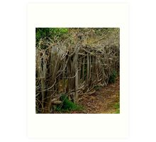 Entwined and Tangled Art Print