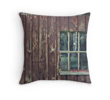 Panes of Brown Throw Pillow