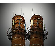 Almost Twins Photographic Print