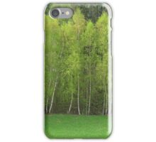 Spring Green - Birch Trees iPhone Case/Skin