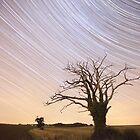 Dead Tree Startrails by Nick Atkin