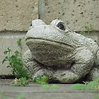 ~ Froggy gets a girlfriend ~ by Donna Keevers Driver