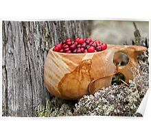 Lingonberry Poster