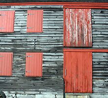 Boat House Wall by RevJoc