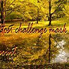 HOST MARKER FOR CHALLENGE  by LudaNayvelt