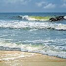 Surf's Up by Kathy Baccari