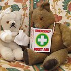 Teddy Aid! by Audrey Clarke