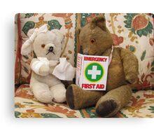 Teddy Aid! Canvas Print