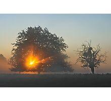 Hampton Sunrise Photographic Print